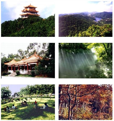 圭峰山是广东省著名风景名胜区,国家森林公园和国家aaaa级旅游区