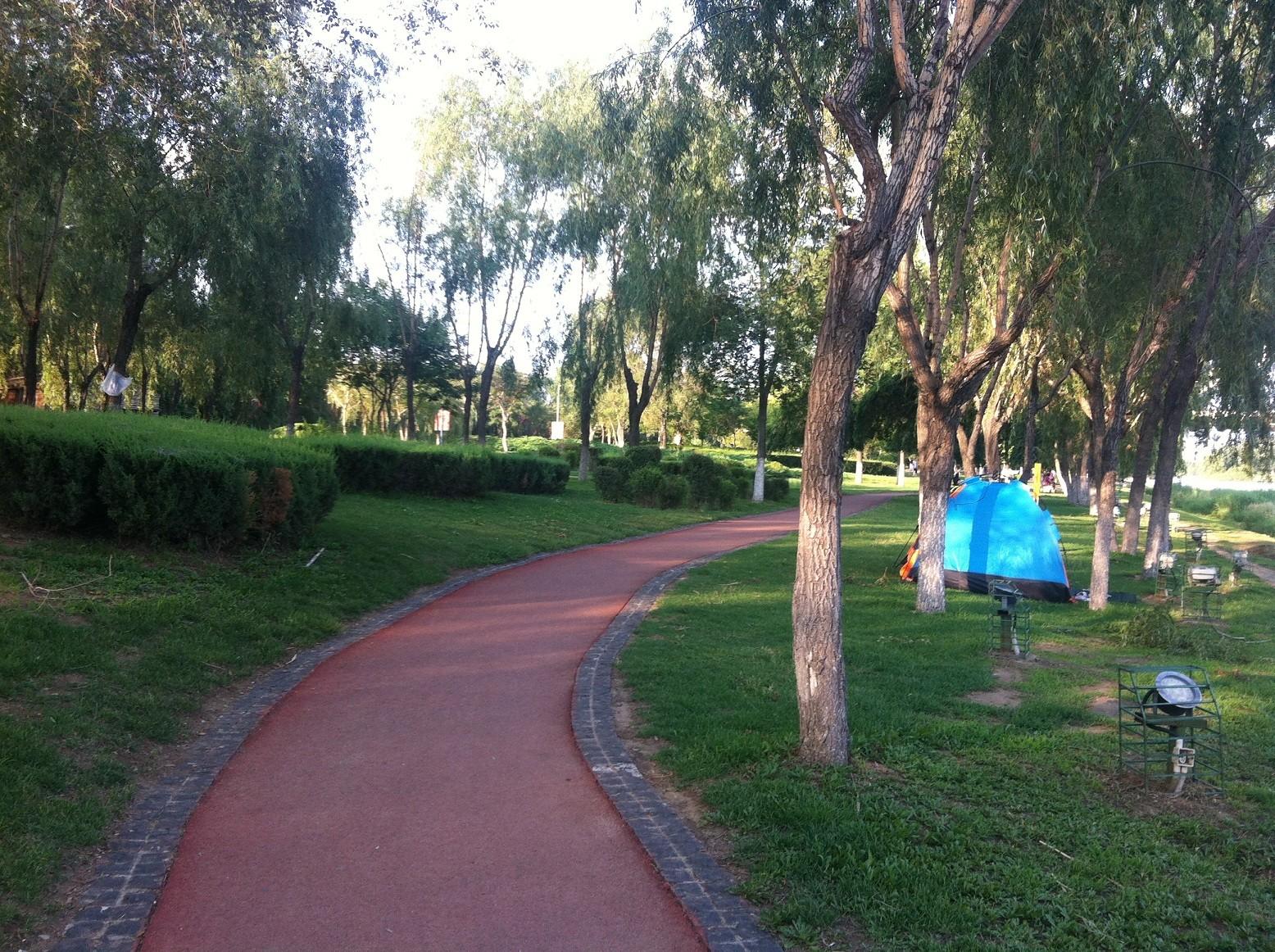 沈阳五里河公园东起长青桥,西至青年大街浑河桥,横跨4公里;北起二环路,南至浑河岸边,纵距400米。首期工程从2001年4月开始施工,于2002年6月竣工。公园占地总面积为126公顷(其中河心岛为12公顷),集文化、休闲、娱乐功能为一体,是沈阳市最大的城市滨河公园。公园建设以植物造园为主,分为自然景观区、文化休闲区、娱乐服务区、异禽生态区、沿道路景观区、湿地生态区、主入口区等几个主要区域。(7)步道/公园特点:沈阳五里河公园在沈阳城南筑起了一道亮丽的风景线。来到五里河公园沿岸,顺着缓步阶而下,附身就可以触摸