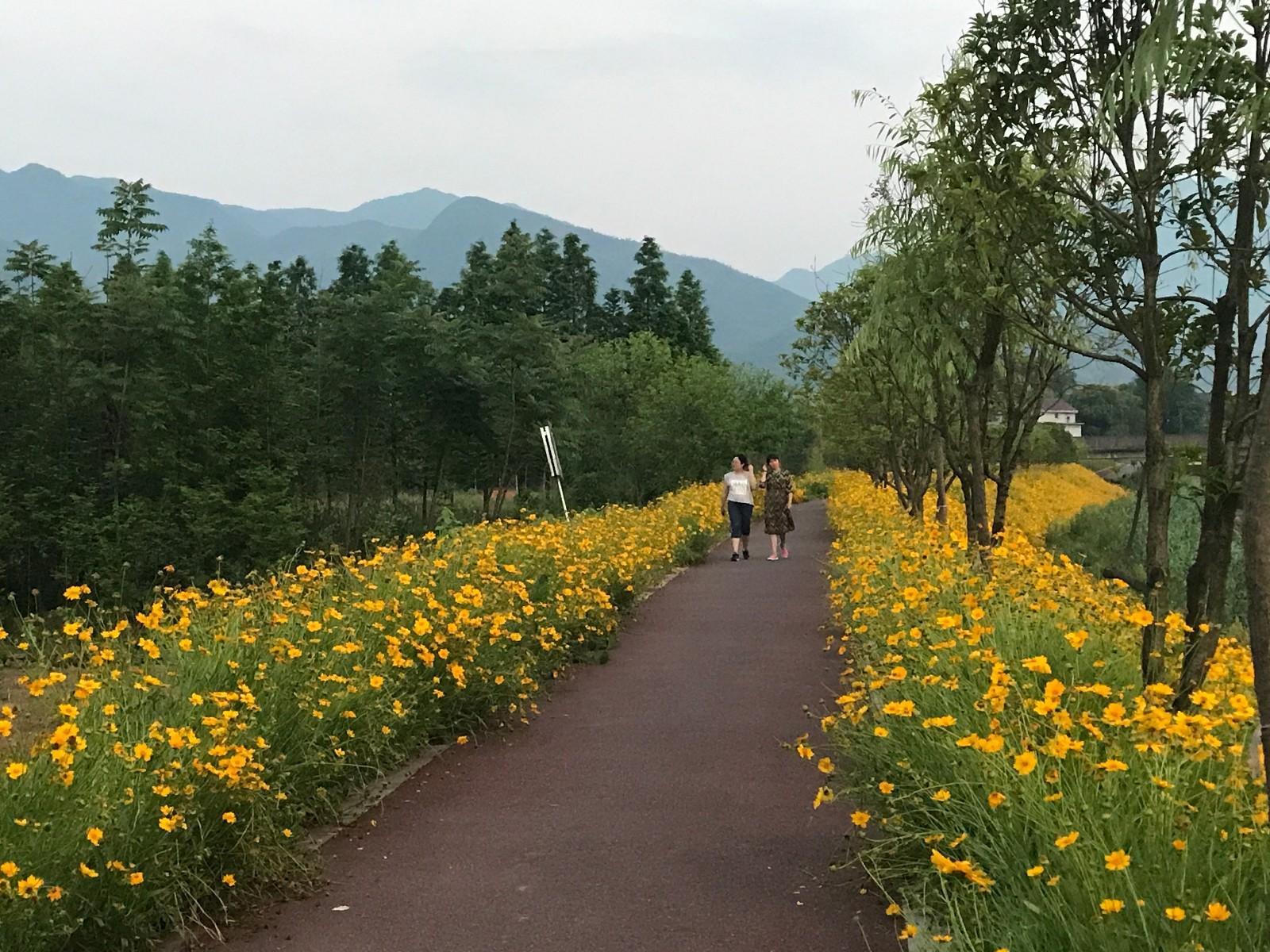 浙江省江山市峡口镇峡里风健康主题公园