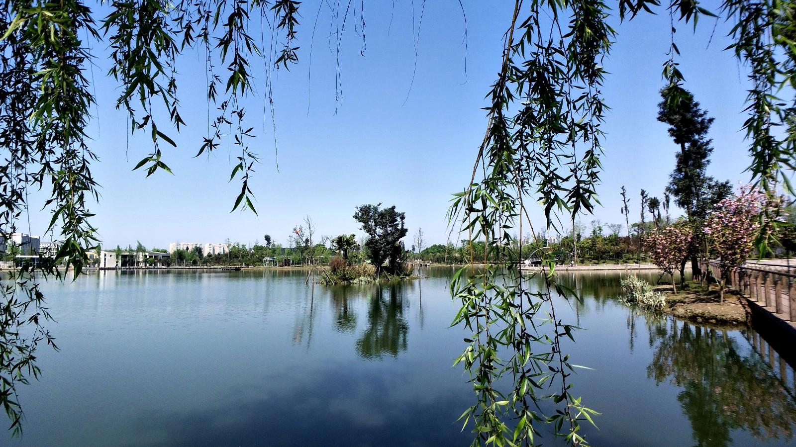四川省成都市双流区凤翔湖市政森林公园